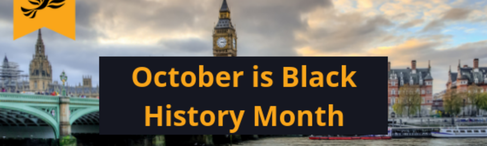 Black History Month- what it means to me