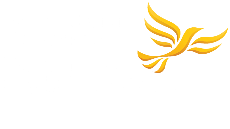 Swansea and Gower Liberal Democrats
