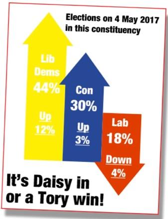 Lib_Dem_St_Albans_Chart.jpg