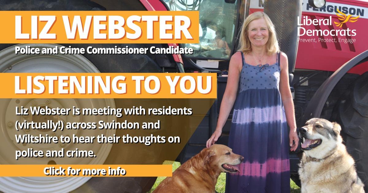 Liz Webster Listening To You