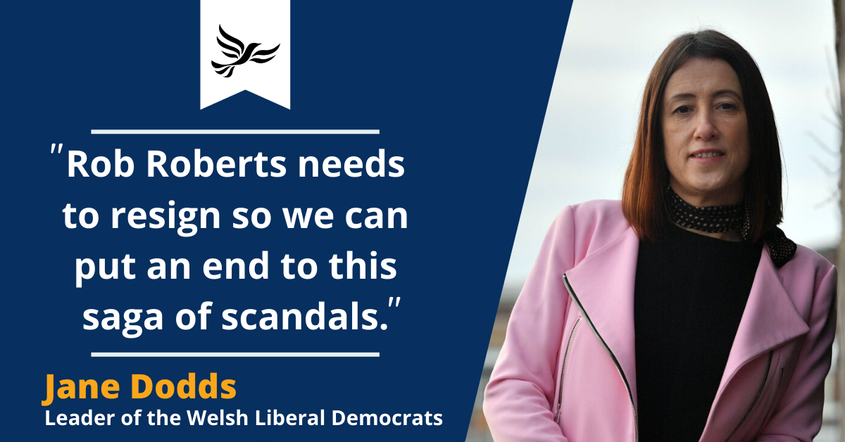 Delyn MP must resign to end 'saga of scandals'