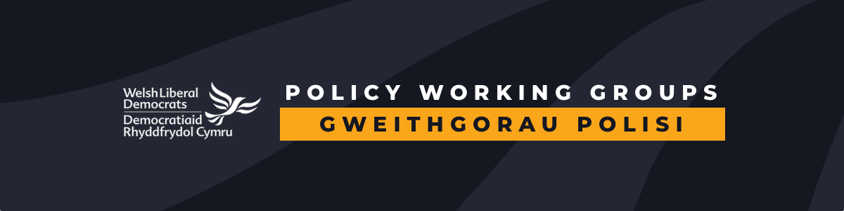 Policy_Working_Group_Banner_-_black.png