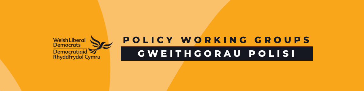 Policy_Working_Group_Banner_-_yellow.png