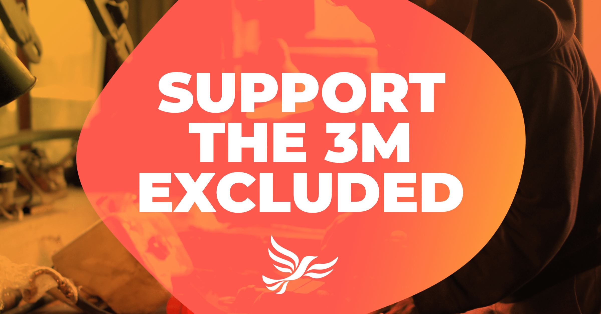Support the 3 Million Excluded