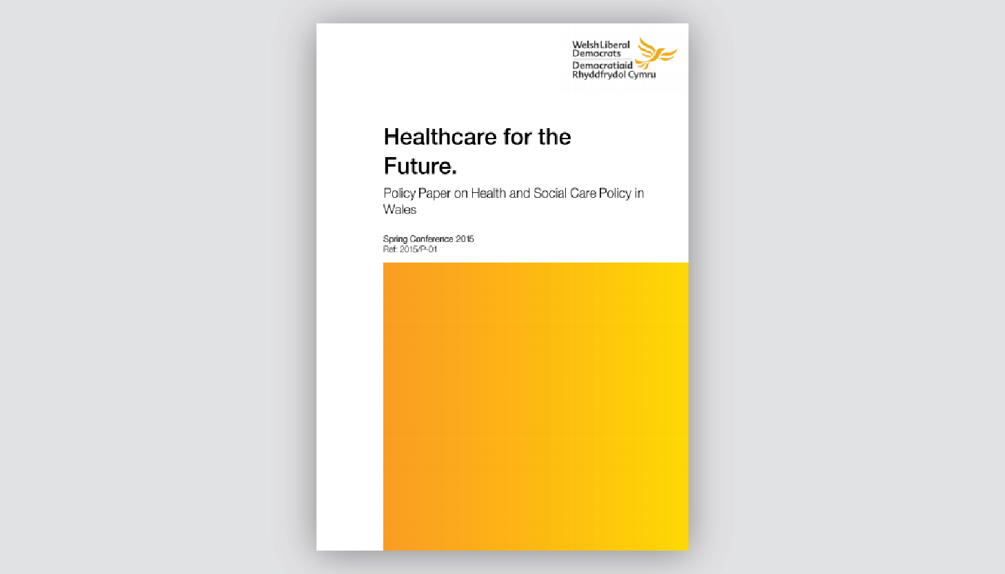 Policy Paper: Healthcare for the Future