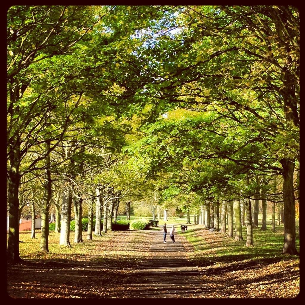 key_cassiobury_park.jpg