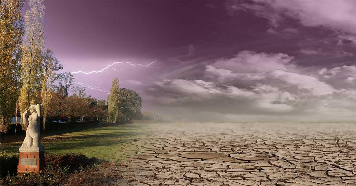 climate_emergency_plain_image.jpg
