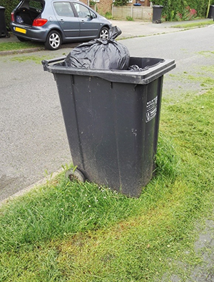 Bin with grass