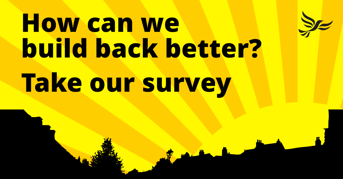 'Build Back Better' Summer Survey