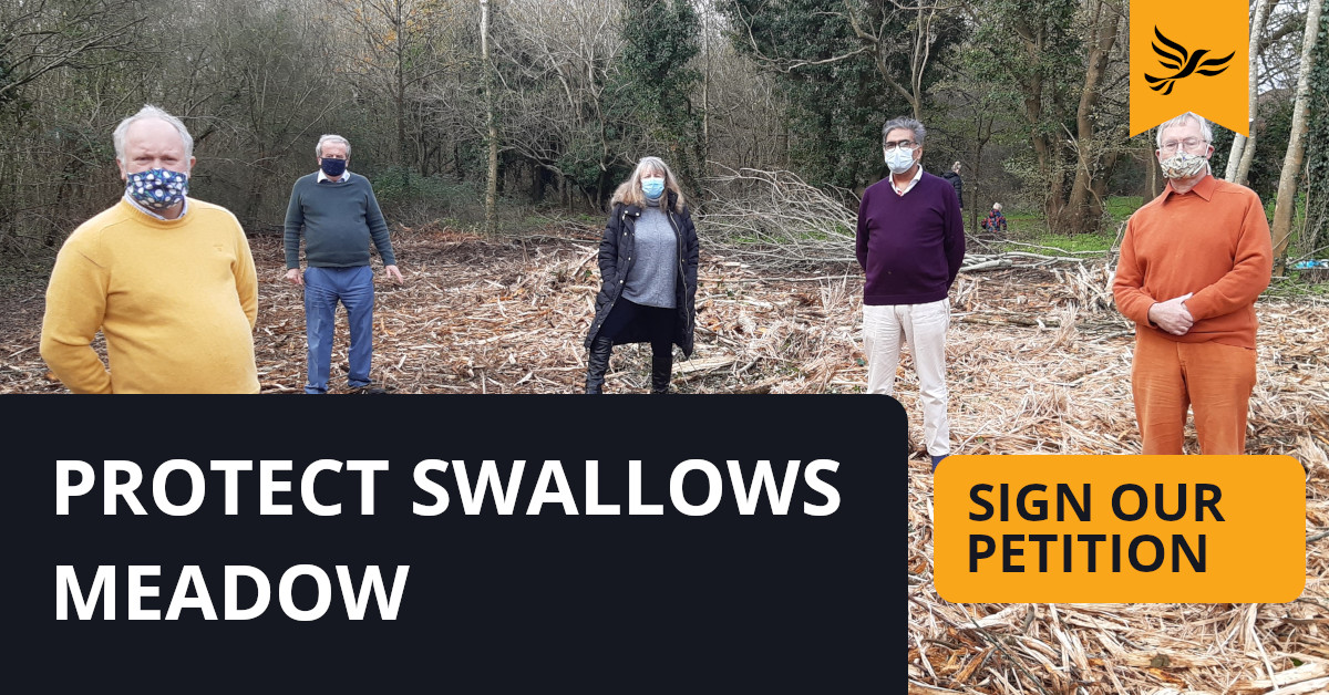 Protect Swallows Meadow