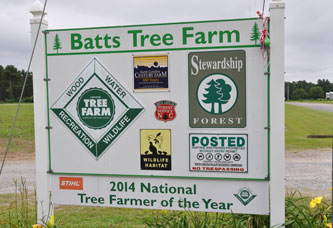 Photo of NC Tree Farm Sign