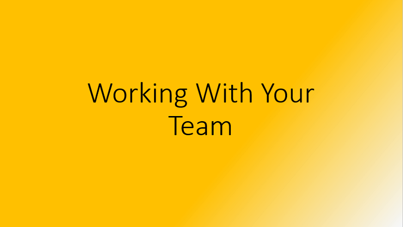 Working With Your Team