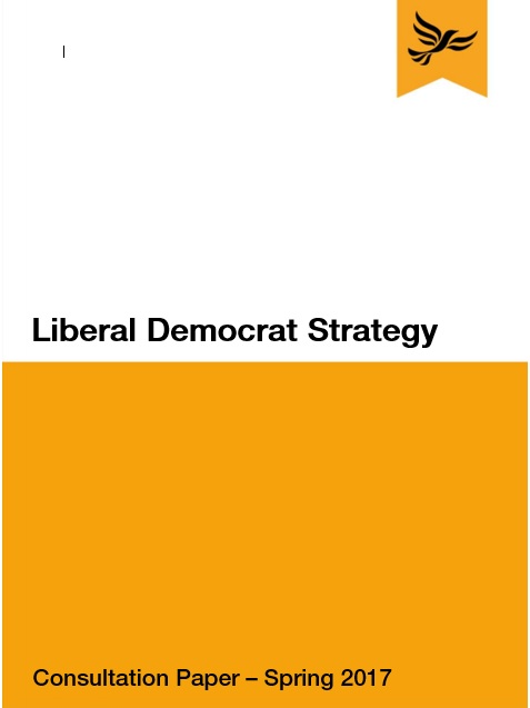 Strategy Consultation Document