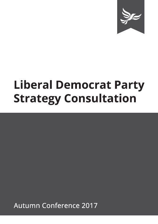 Party Strategy Consultation