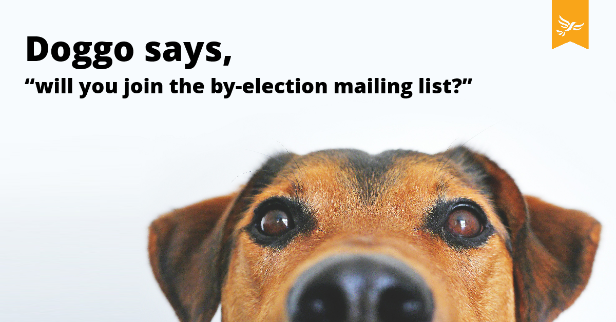 By election emails