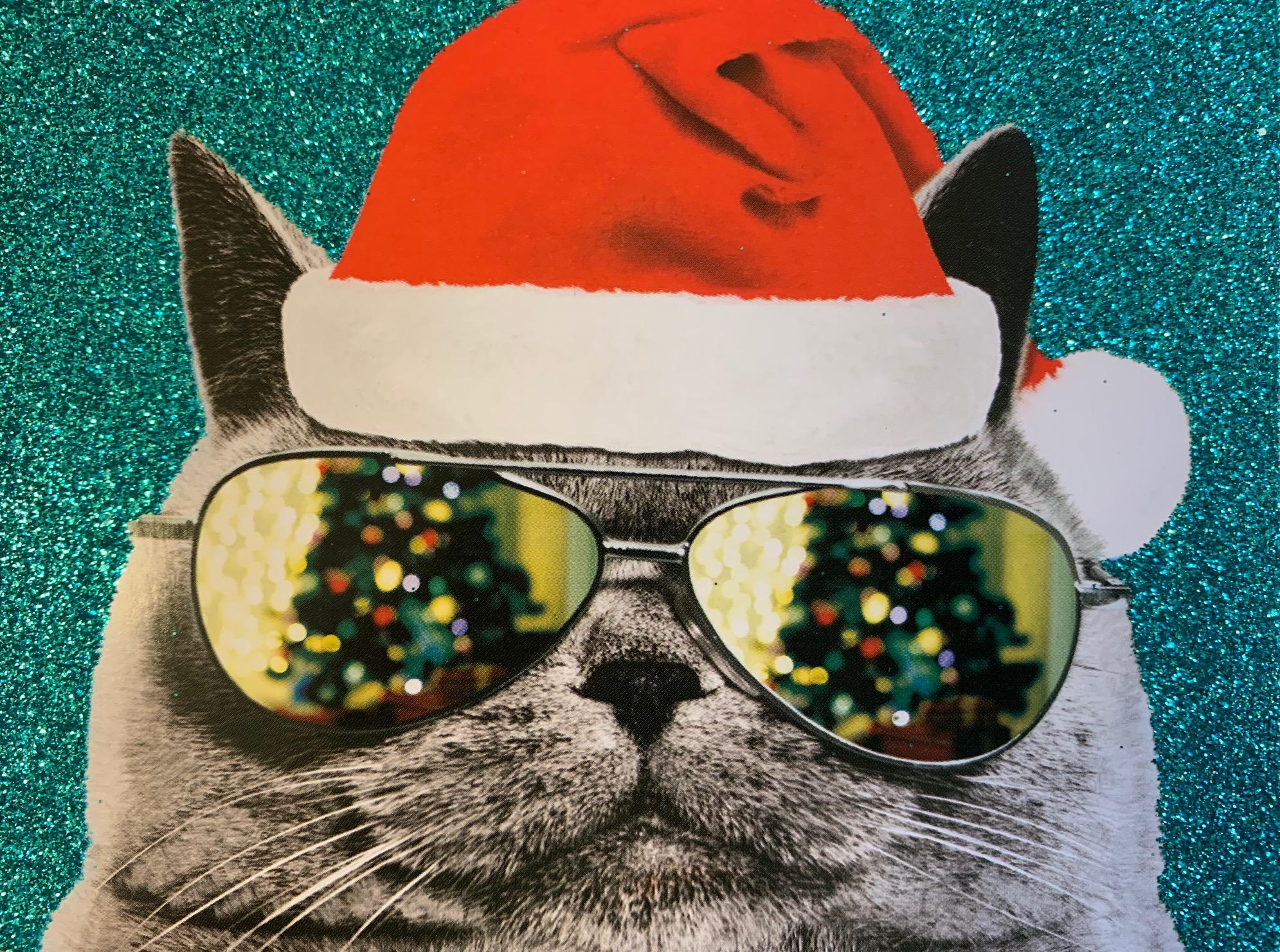 catcard.jpg