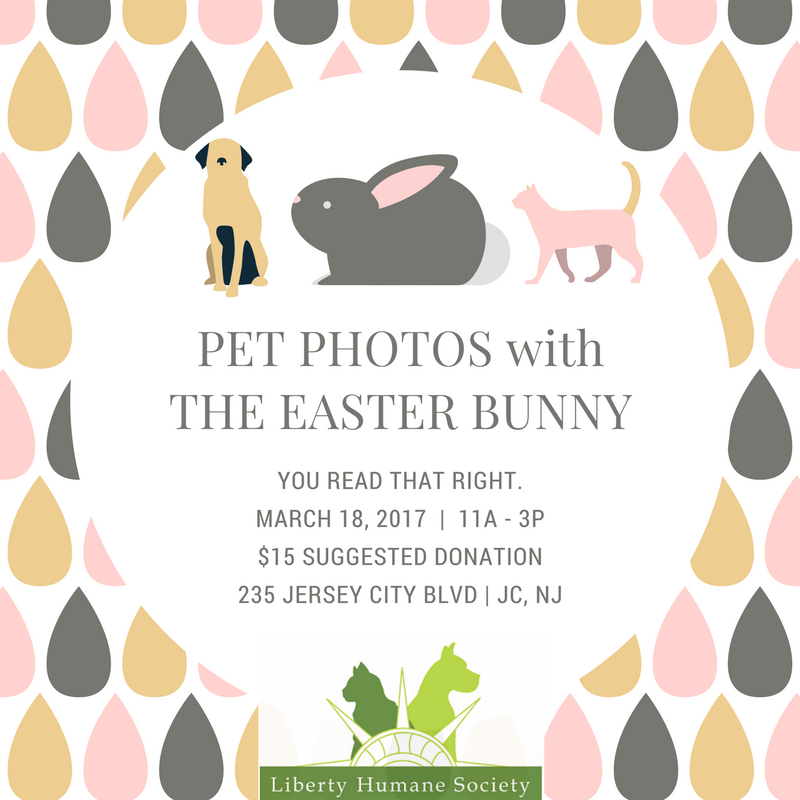 PET_PHOTOSwithTHE_EASTER_BUNNY.png