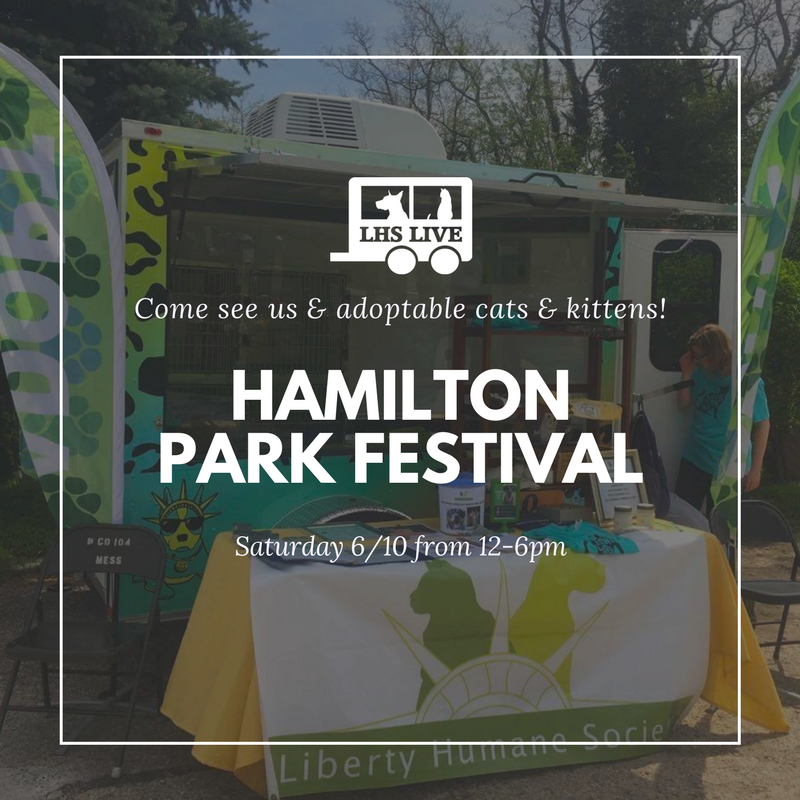 Hamilton_Park_Festival.png