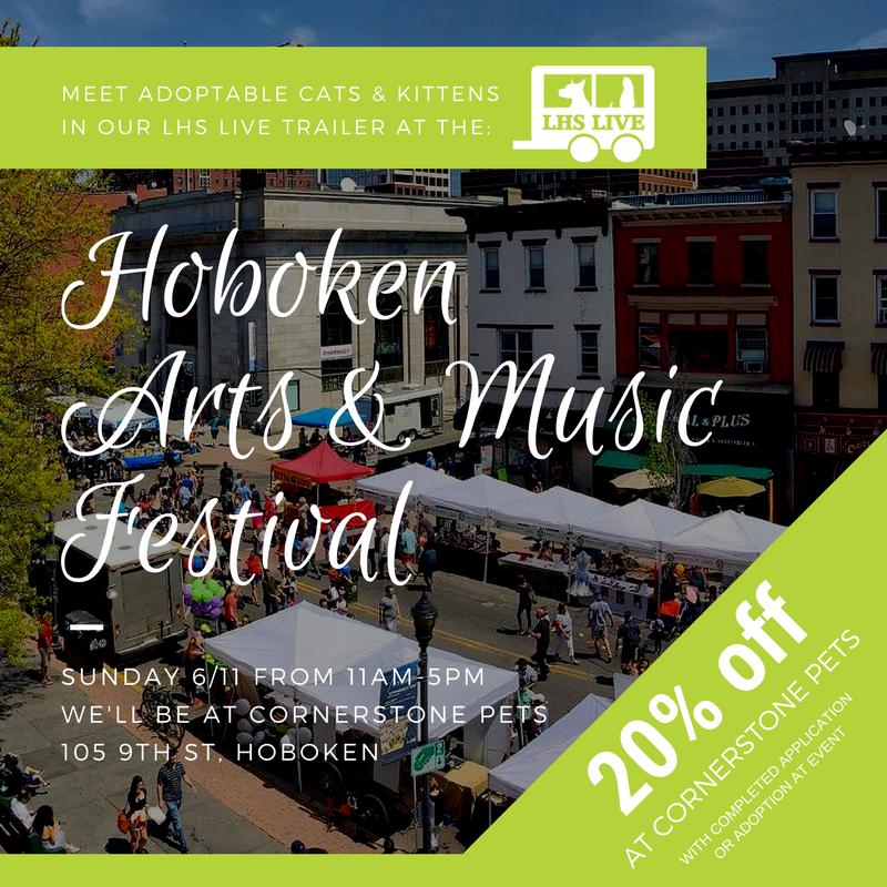 Hoboken_Art___Music_Festival1.png