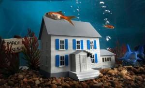 underwater-home-300x182.jpg