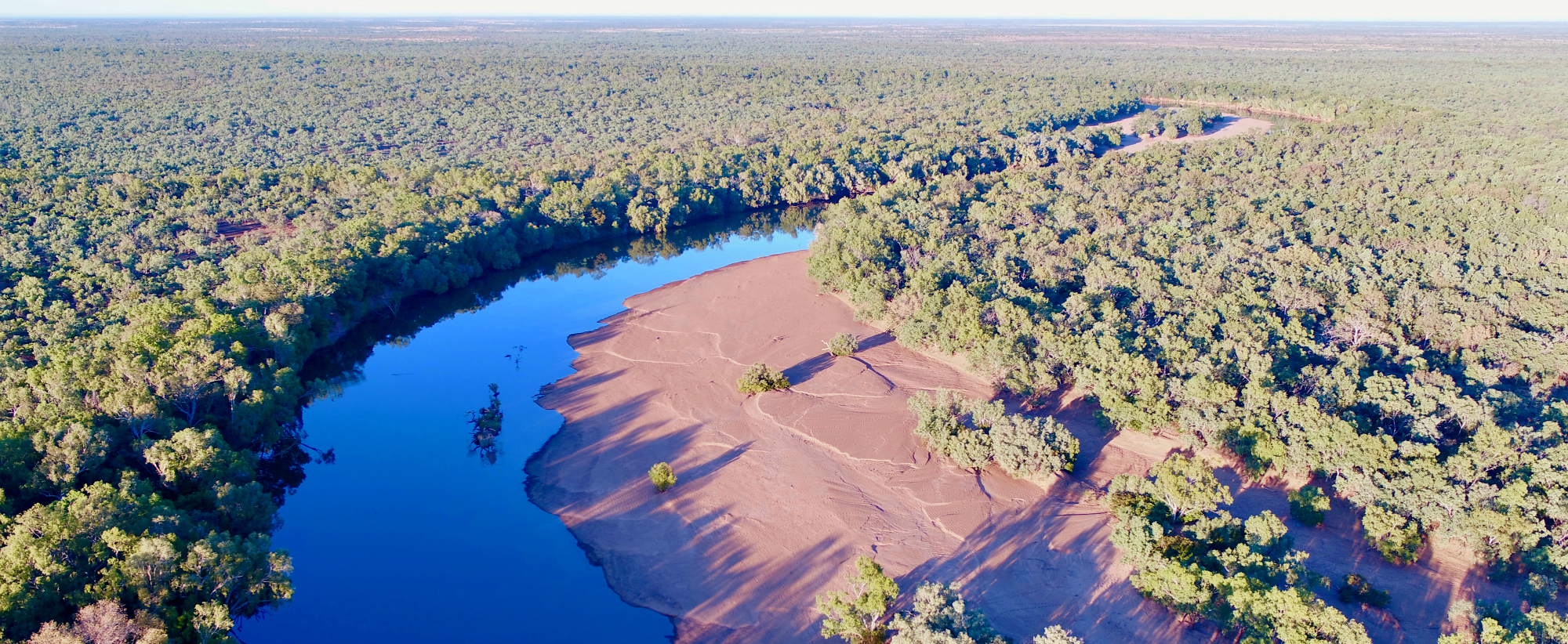 Protecting the Kimberley's Fitzroy River|SCIENCE STATEMENT OF SUPPORT