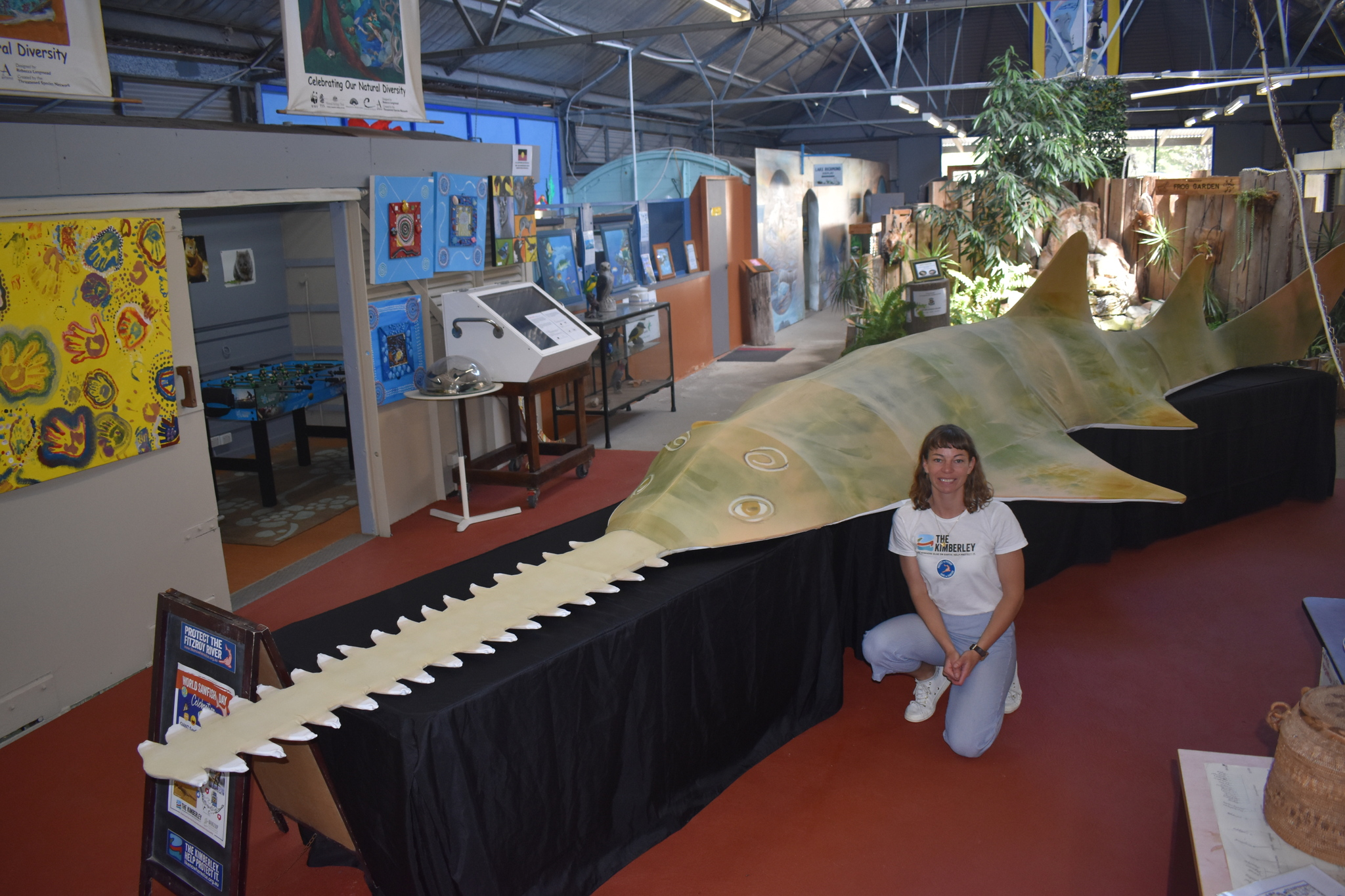 By popular demand the sawfish will stay in Rockingham for two more weeks.