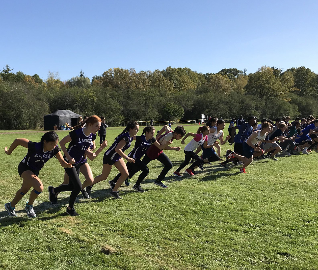 Runners_4.jpg