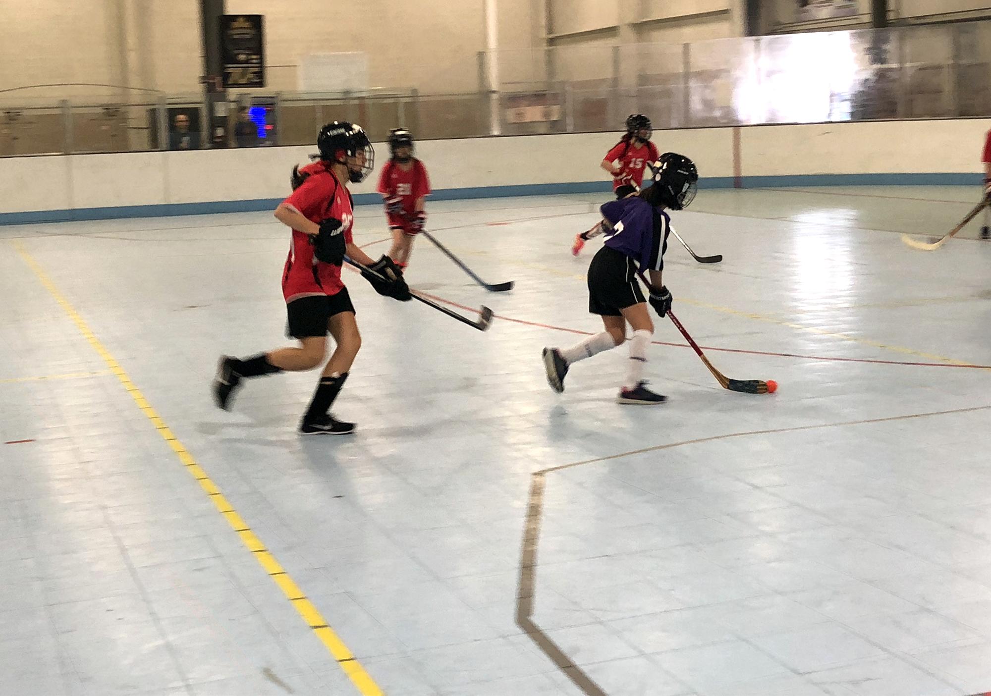 BallHockey_2018_6.jpg