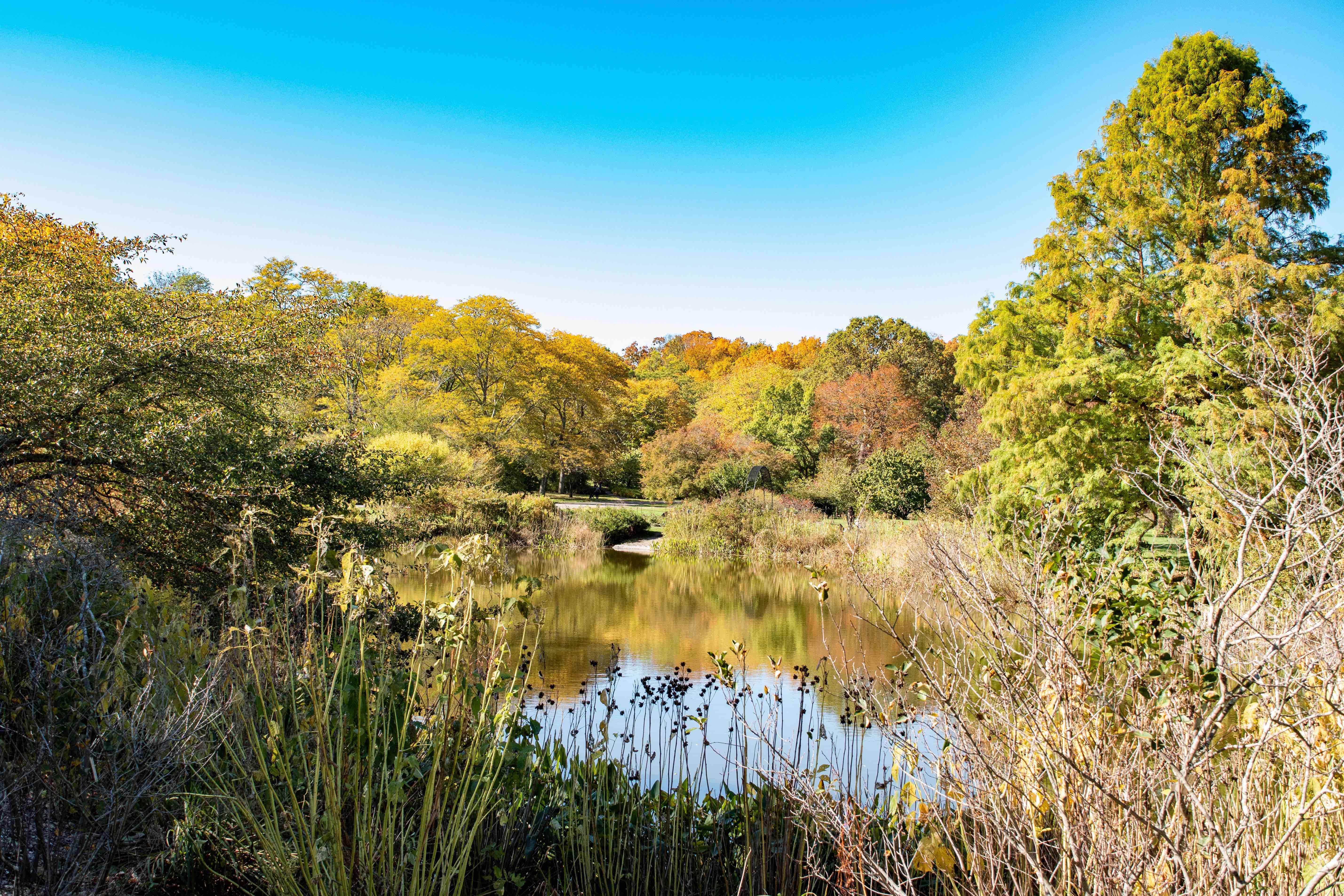 Arboretum-0089.jpg