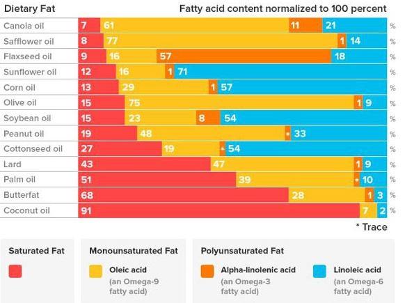 fat-components.JPG