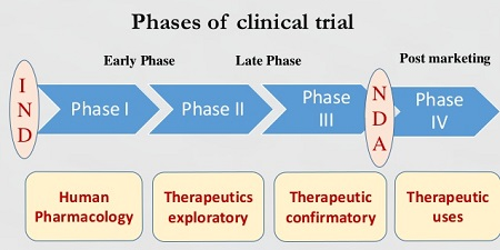 trial-phases.jpg