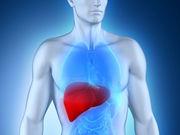 cornell-liver.jpg