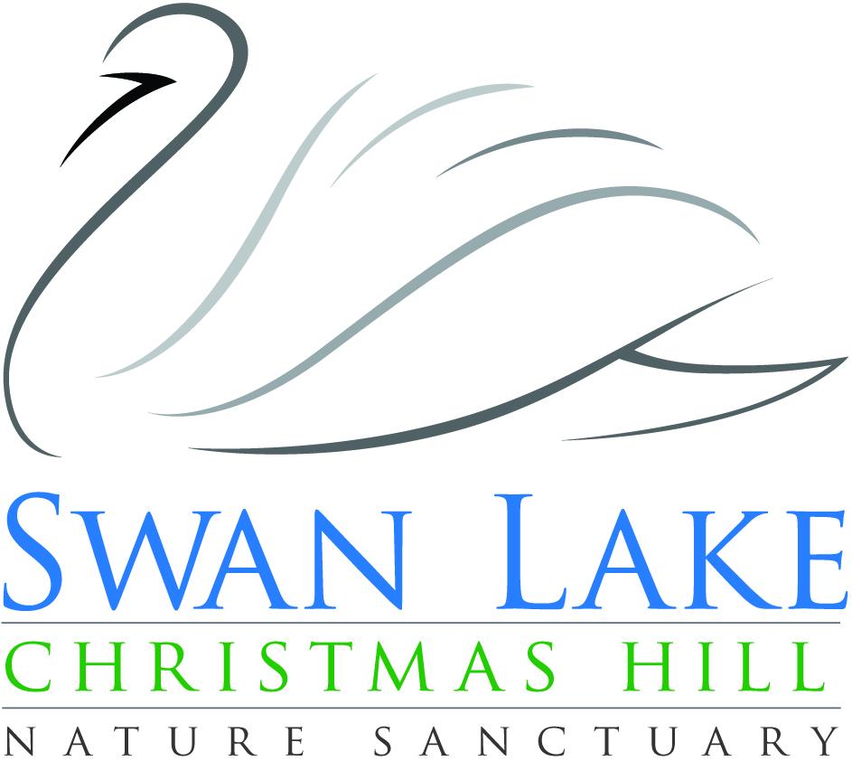 Swan Lake Christmas Hill