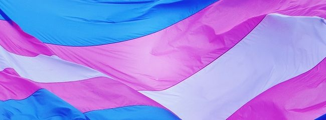 transflag1.jpg
