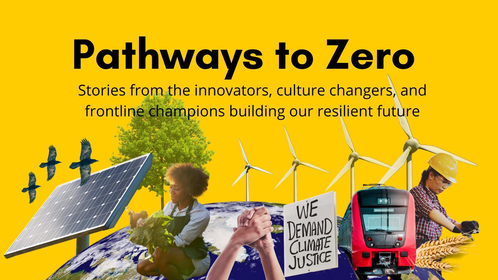 Pathways To Zero Poster