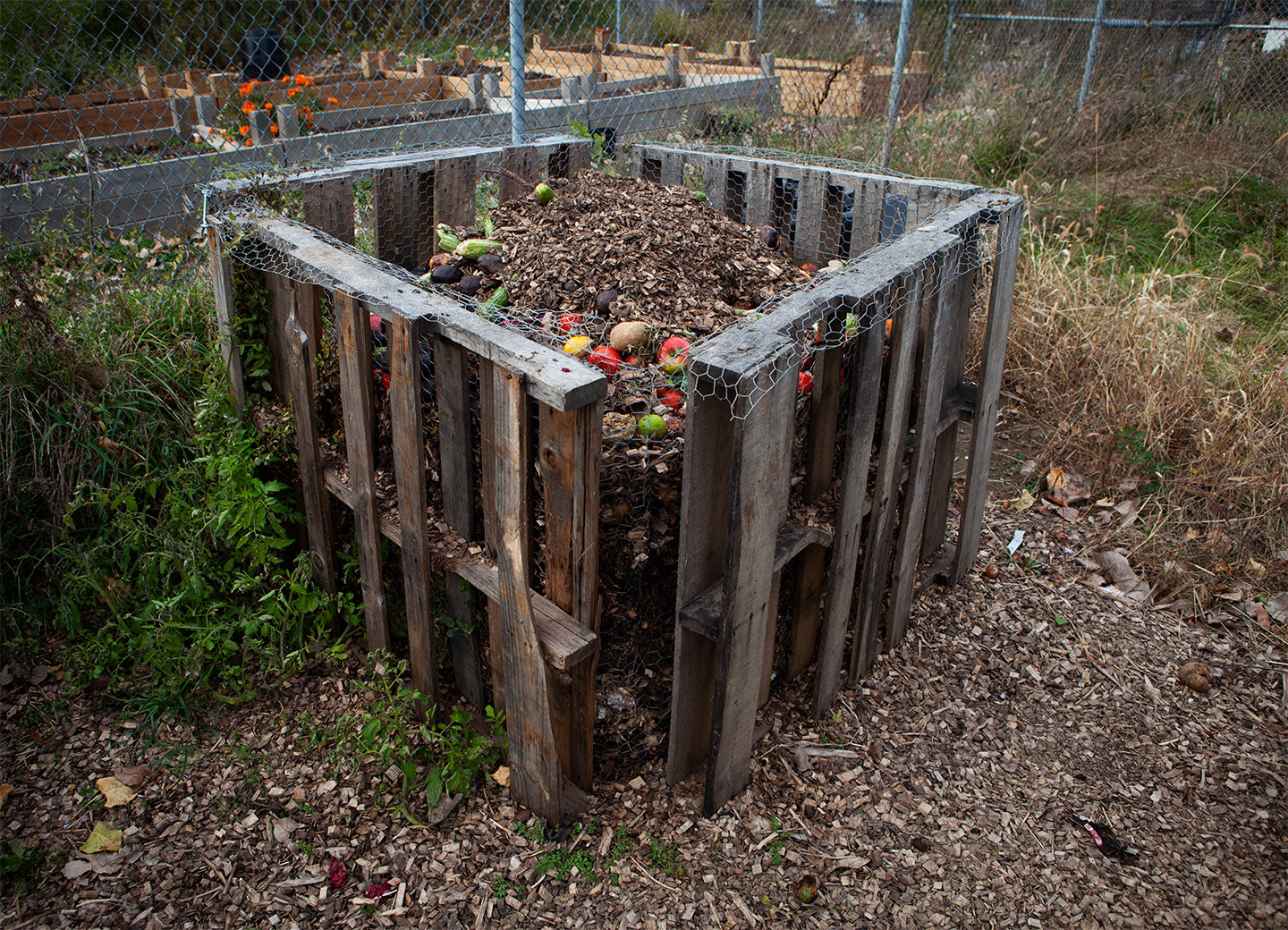 Compost bin filled with organic material