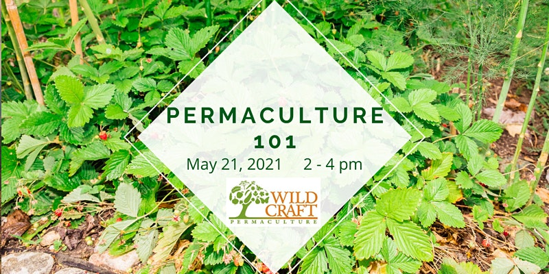 Permaculture 101 Poster