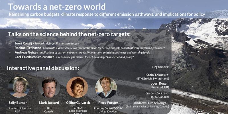 Towards a net zero world panel