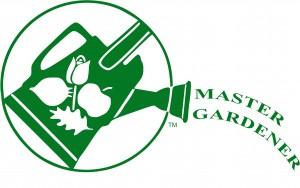 LMMG_Logo-300x188.jpg