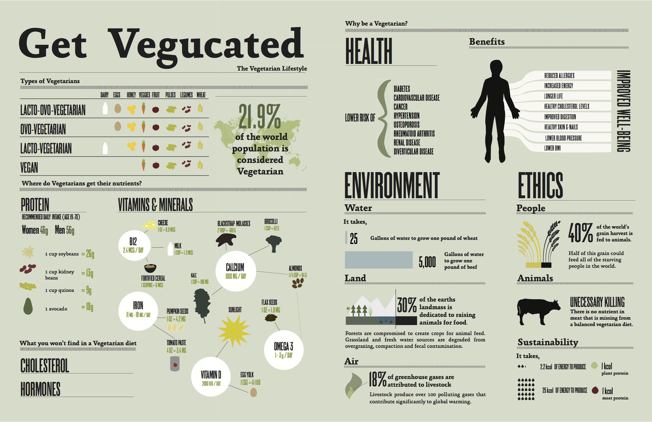 Vegetation Education