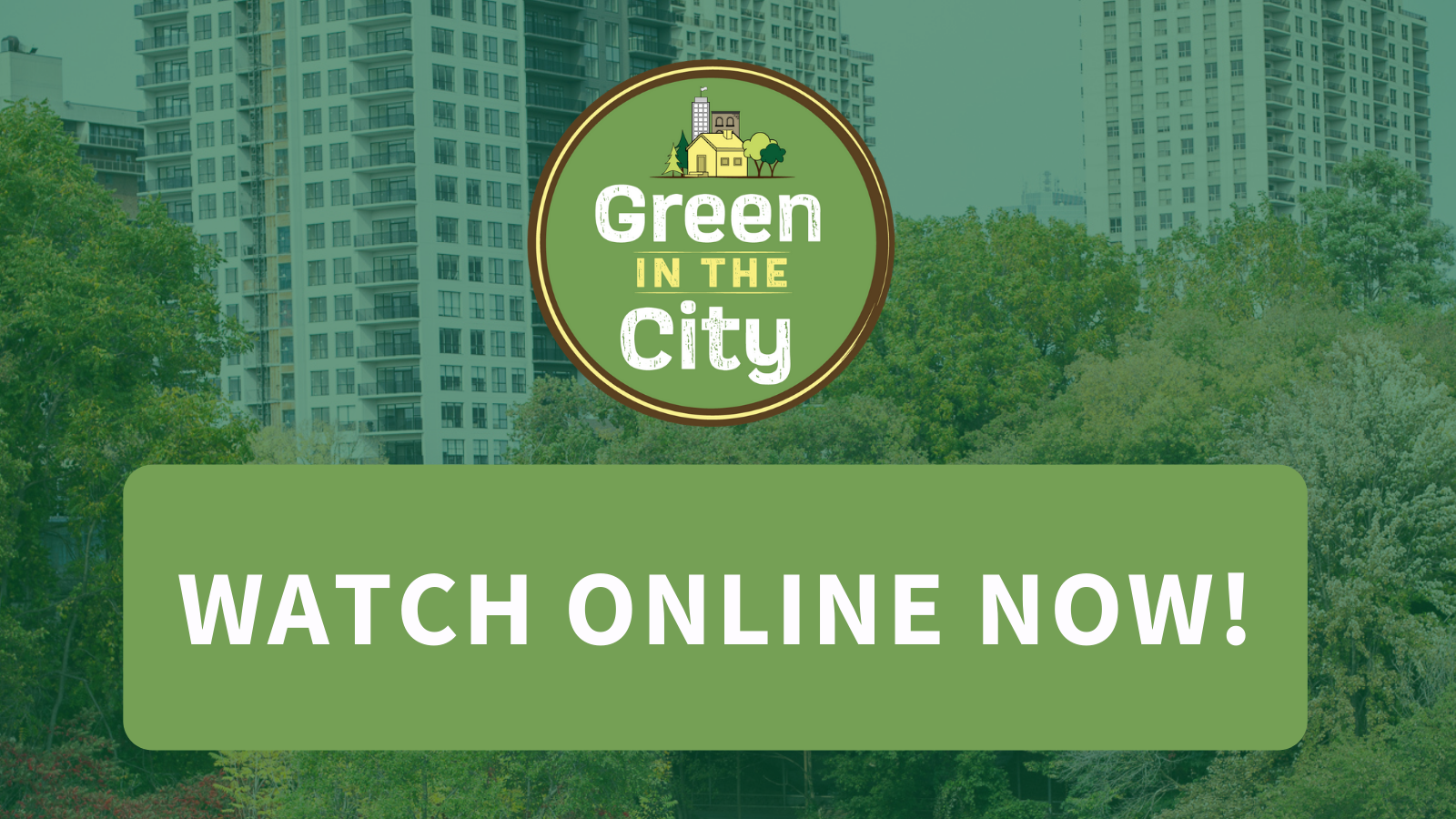 Green in the City Series