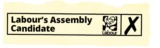 ballot_-_Constituency_assembly_vote.png