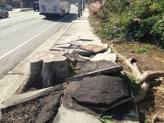LA-Sidewalk.jpg