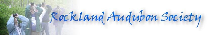 RAS_Logo_2.jpg