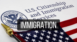 issues-immigration-300x164.png
