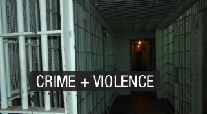 issues-crime-violence-300x166.png