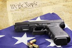 Gun_Rights_250.jpg