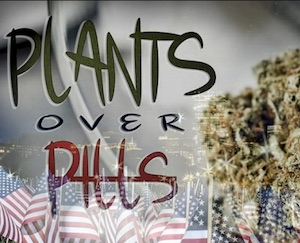 Plants_Pills.jpg