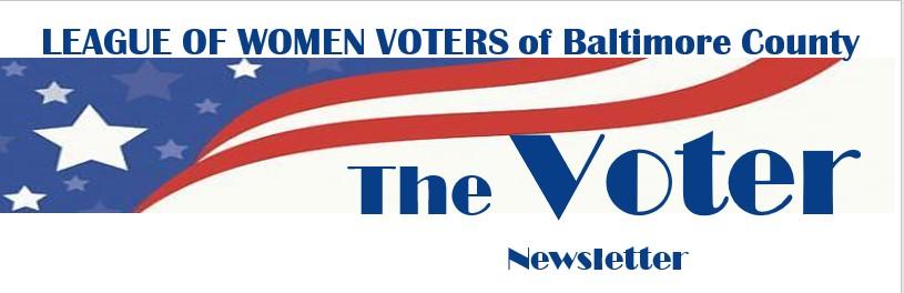 the_voter.jpg