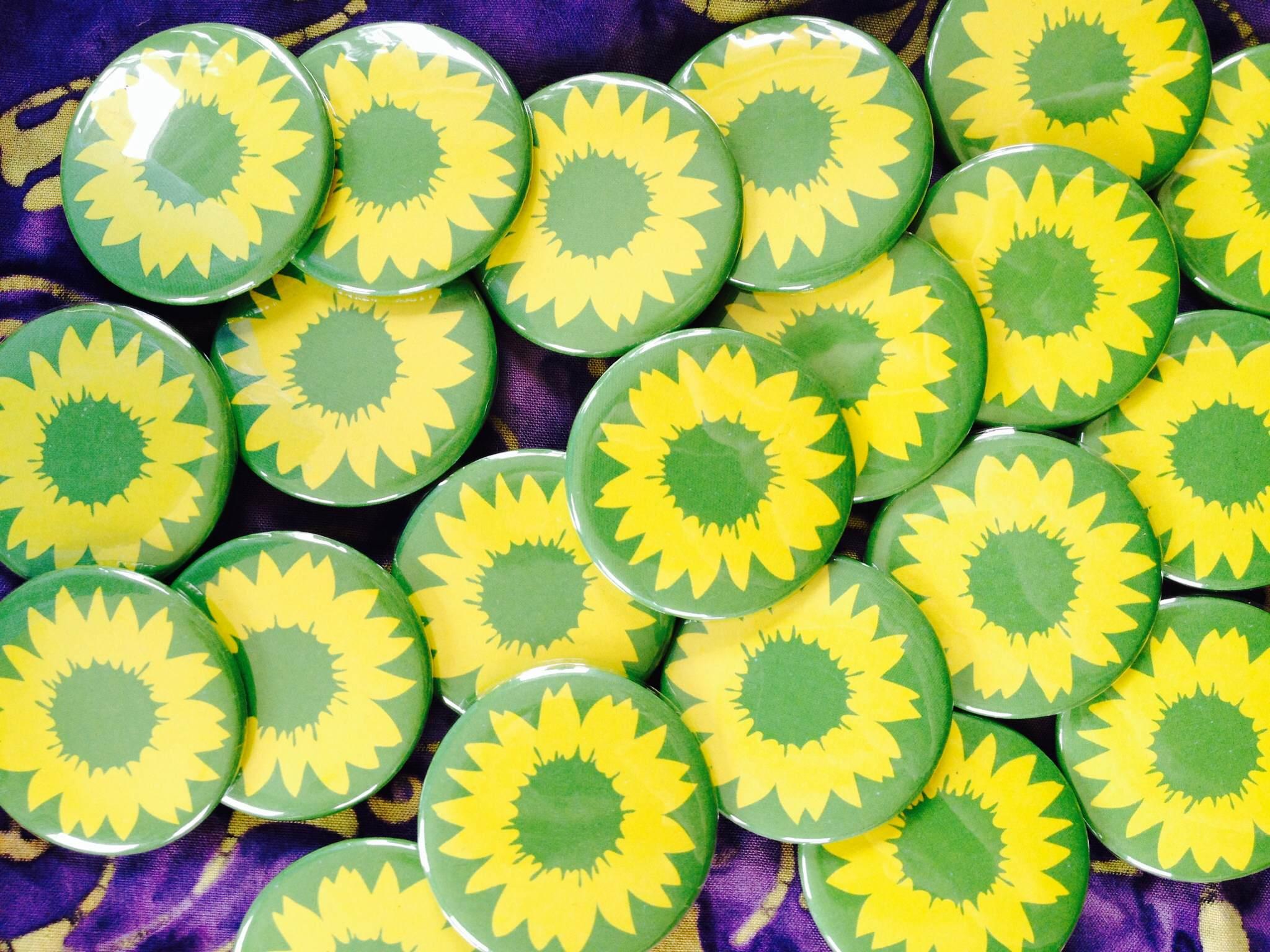 FlowerButtons.JPG